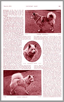article from Country Life 1903, page 2
