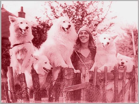 ivy Kilburn Scott and some of her dogs